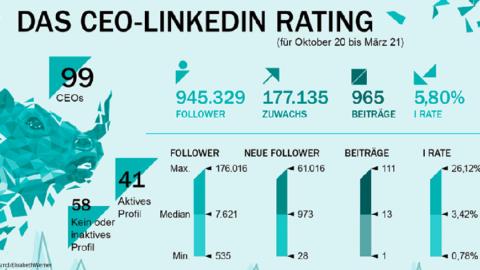 LinkedIn CEO-Navigator