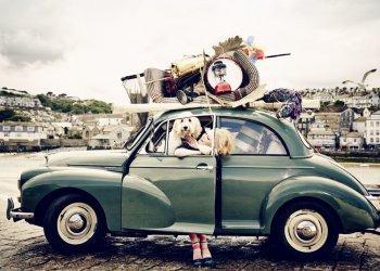 "Platz 3 der Produktfotos: Burlington Painted Ajour - ""A Lovely Argyle Weekend"". (c) Esther Haase"