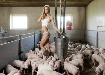 """Unter dem Motto """"Jungbauern 2.0"""" wurden leicht bekleidete Damen in den Ställen modernster Agrarbetriebe abgelichtet (c) 2014 Agro Communication GmbH"""