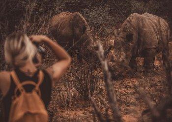 """Rhino Tracking in Namibia"" / KPRN network GmbH / Namibia Tourism Board, Susanne Dopp (c) Alexander Heinrichs"