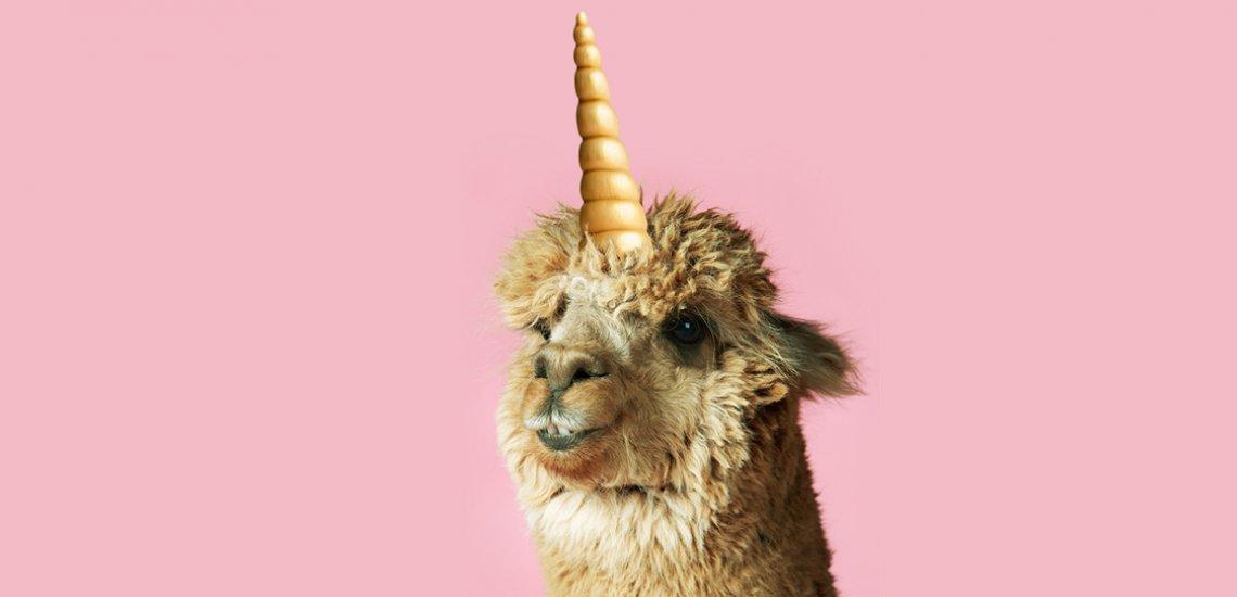 Einhörner? Out! Doch der nächste Tiermotiv-Trend steht schon in den Startlöchern. (c) Thinkstock/Quadriga Media Berlin