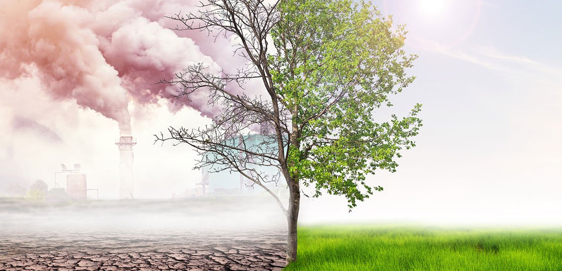Neben Microsoft will eine Vielzahl weiterer Firmen CO2-neutral werden. / Klimaneutralität: (c) Getty Images/angkhan