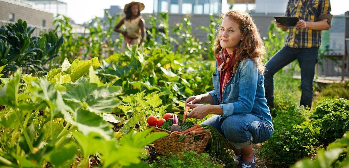 Für 57 Prozent der Deutschen ist Nachhaltigkeit ein wichtiges Thema./ Nachhaltigkeit: (c) Getty Images/ julief514
