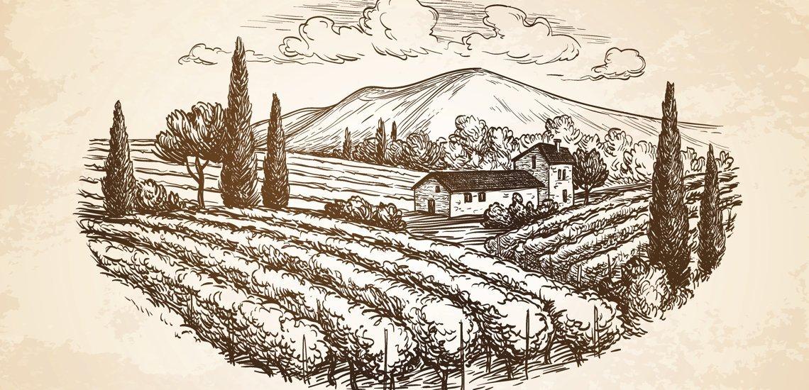 Ein idyllisches Weingut (c) Thinkstock/Alhontess