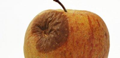 Apple nervt. (c) Thinkstock/iStock