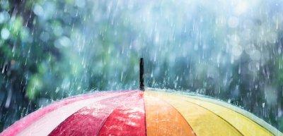 Alle unter einem Schirm: Das Unternehmen krisenfest zu machen, ist ein gemeinsamer Kraftakt. (c) Getty Images/RomoloTavani