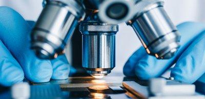 Wie können Erkenntnisse aus Wissenschaft und Forschung einfach kommuniziert werden? (c) Getty Images / Kkolosov