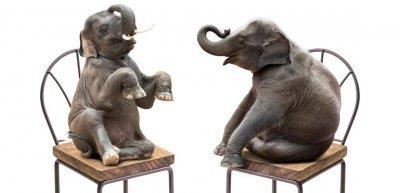 SWR: Die Elefantenrunde und der Shitstorm (c) Getty Images/iStockphoto/Chinnasorn Pangcharoen