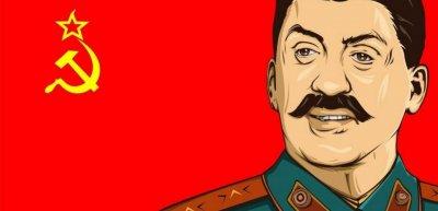 Nicht Stalin, sondern Stallone: AfD mit peinlichem Bildfehler auf neuem Portal. (c) Screenshot Reddit