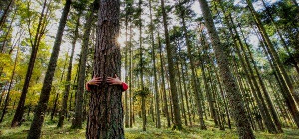 Klima- und Umweltschutz ist den Deutschen ein wichtiges Anliegen. (c) Getty Images/conceptualmotion