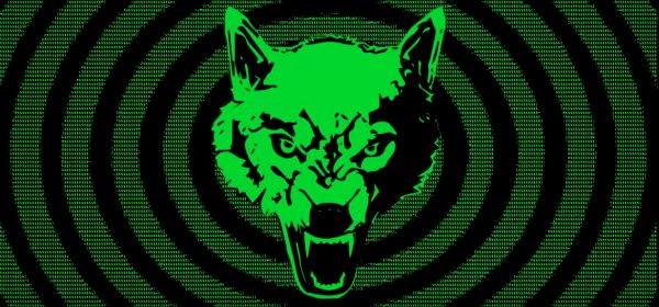 Der VfL Wolfsburg positioniert sich neu. (c) VfL Wolfsburg