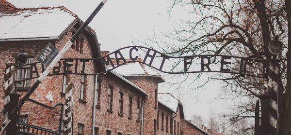 Bis zum 27. Januar will die Gedenkstätte Auschwitz-Birkenau 1 Million Twitter-Follower erreichen. (c) Getty Images / yurii_zym
